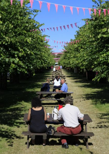 Picnic Bench Hire at Hampton Court - BE Event Hire